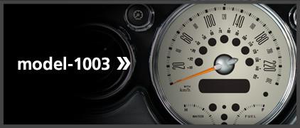 model-1003