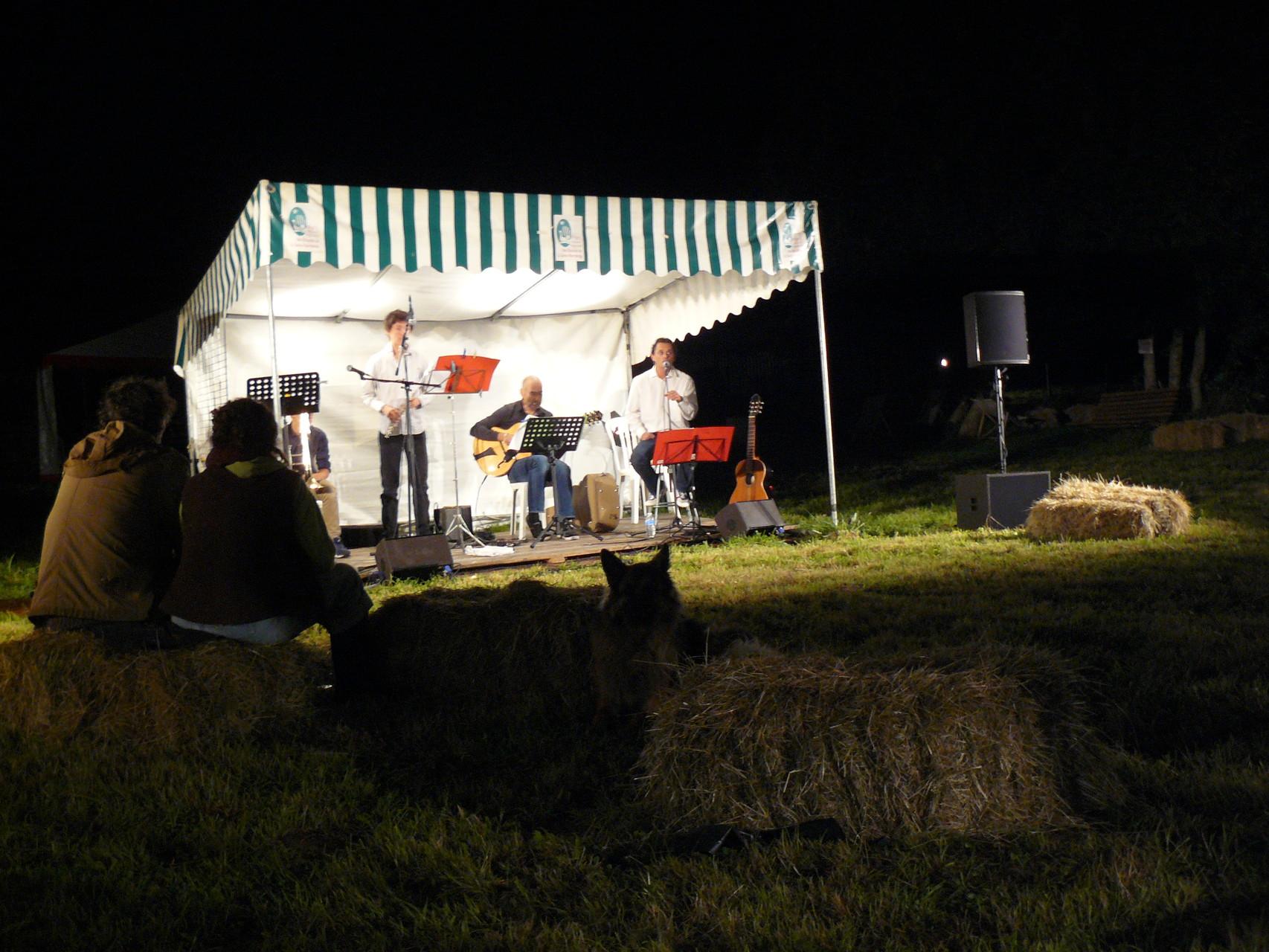 Festival Les Fimeurs - Concert