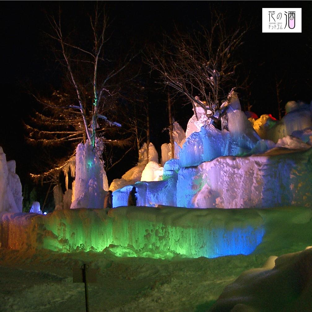 見る者を魅了する氷点下の森 多くの観光客が足を運ぶ