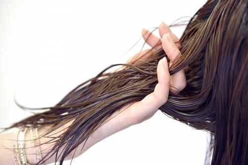 アミノ酸が最も多く含まれている日本酒が育毛に良い