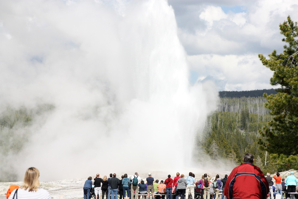 YELLOWSTONE : OLD FAITHFUL GEYSER le plus grand du parc