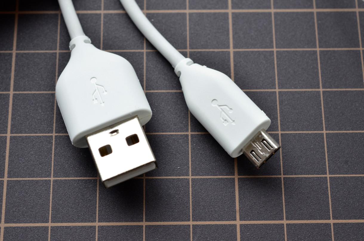 ケーブルが一本。片側がUSBでもう一方がマイクロUSB。汎用品で代用可