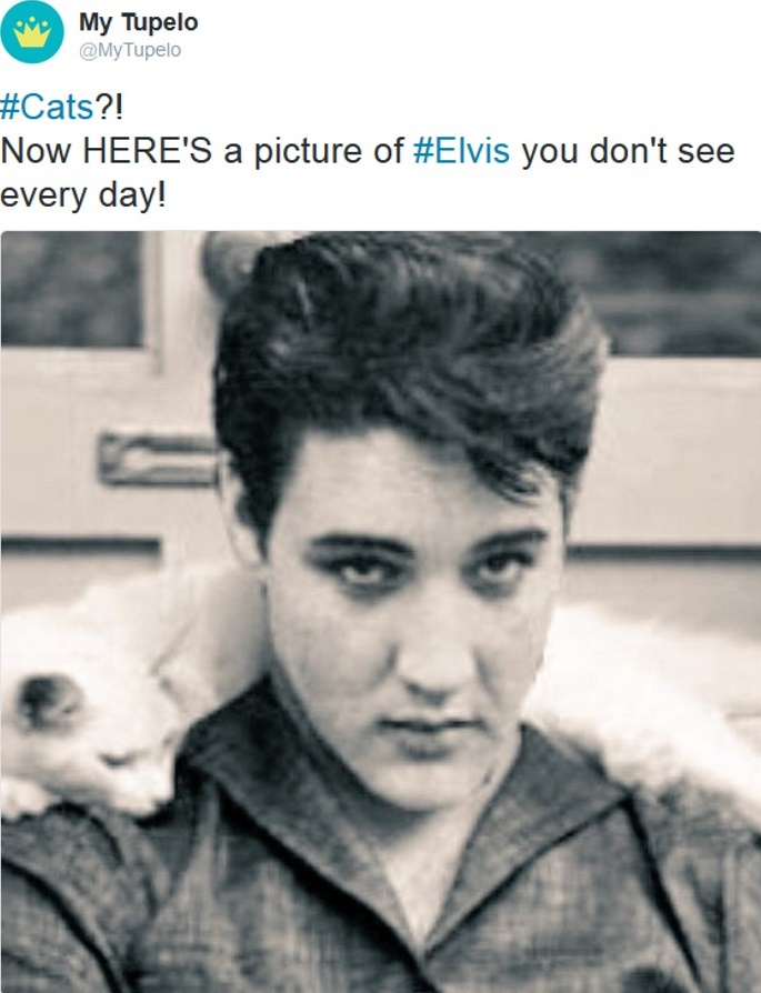Now HERE'S a picture of Elvis you don't see every day!  - Tweed 29.06.2016, 08:45 Uhr