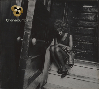 transounds | Last Days... Of Disco