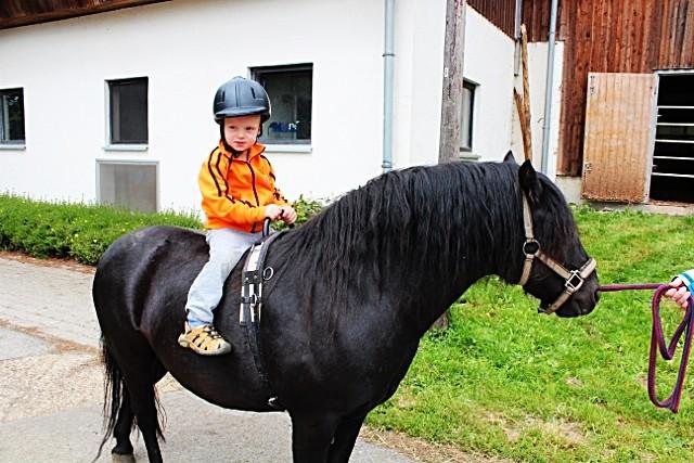 Ponyreiten Bauernhofferien Eifel