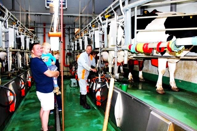täglich Kühe melken Bauernhofferien Eifel