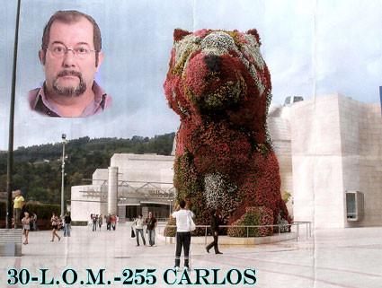 30-L.O.M.-255 - CARLOS - VIZCAYA