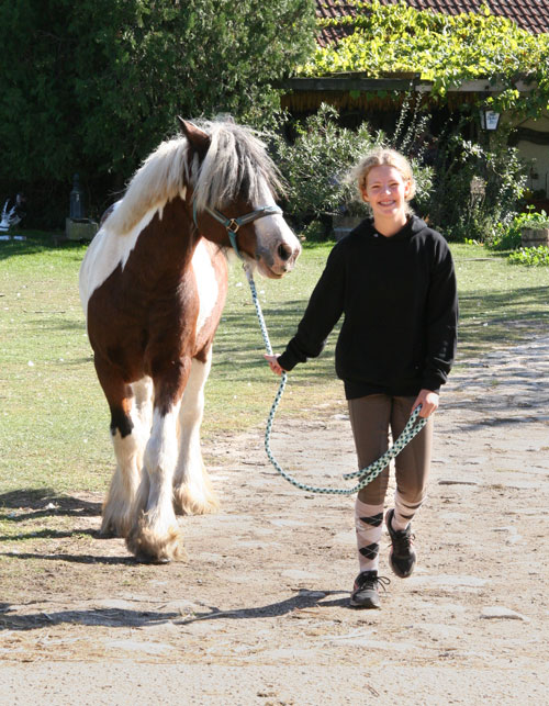 Reitercamp in den Ferien, Mädchen mit Pferd