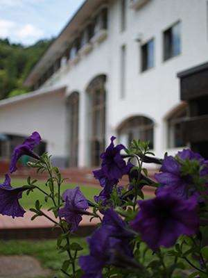8. 本館の周囲には季節の花々やハーブが出迎えてくれる