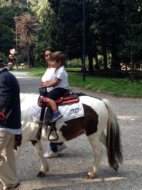 Ponys en los Jardines Publicos