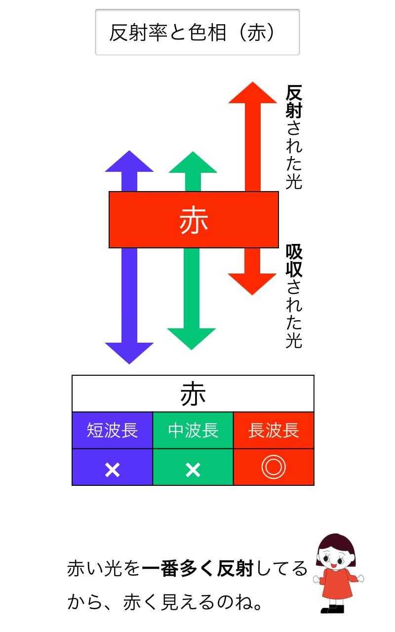 赤い物体の吸収と反射