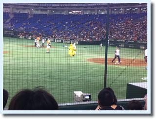 三塁側 イースタンリーグが面白い