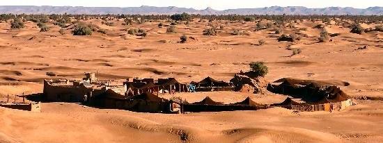 maroc, désert, randonnée, méharée, dromadaire
