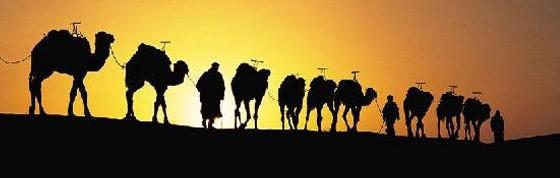 séjour, vacance, réveillon, randonnée, Maroc,Marrakech, sud, bivouac