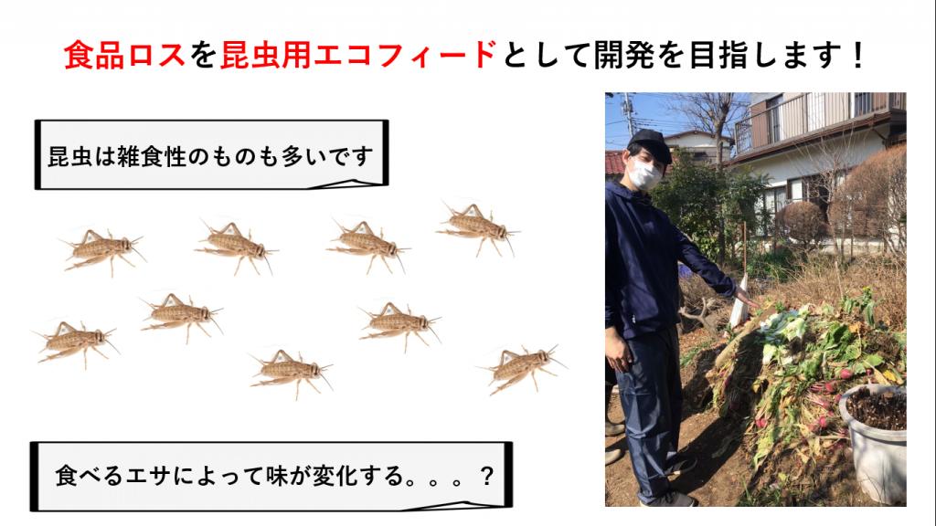 うつせみテクノ 食品ロスを使ったブランドコオロギ&昆虫日本食・文化・農業へ向けてのクラウドファンディング挑戦中!!!