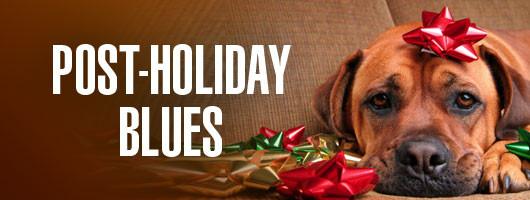 Post-Holiday Blues