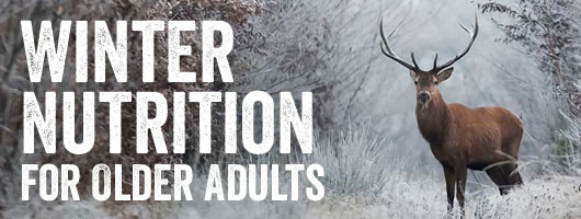 Winter Nutrition for Older Adults
