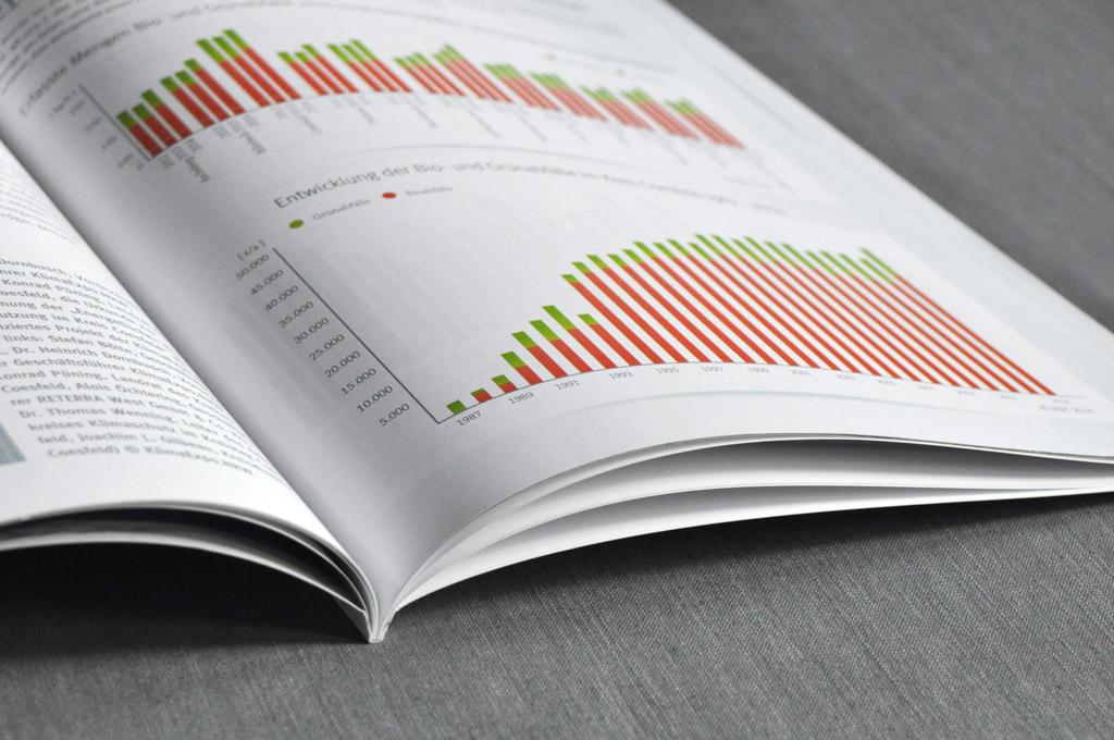 Konzept, Layout und Druck von Geschäftsberichten