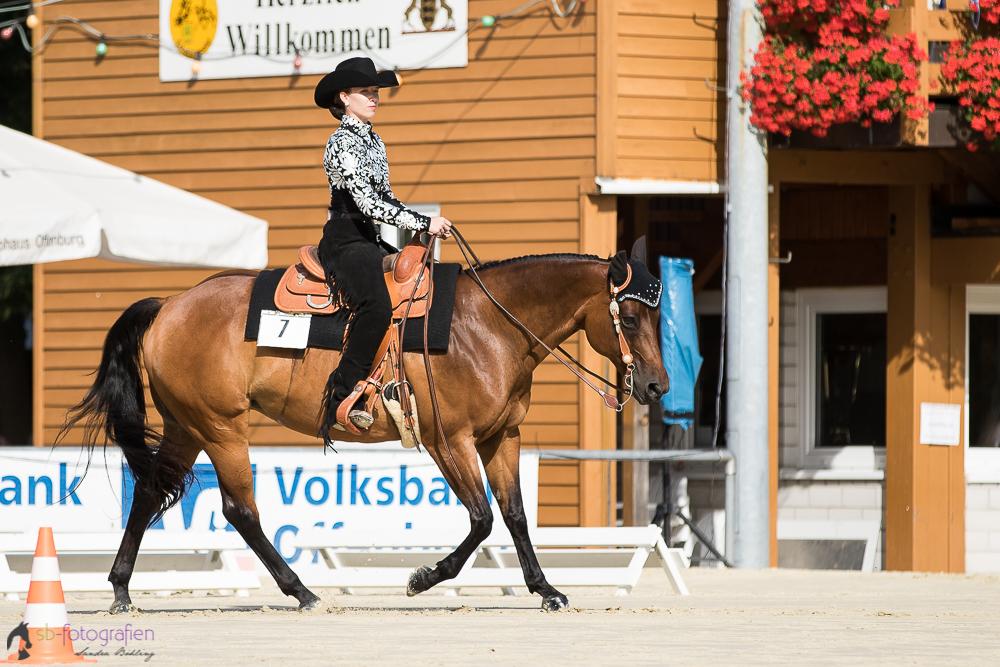 EWU Landesmeisterschaft 2016 - 6. Place - Horsemanship