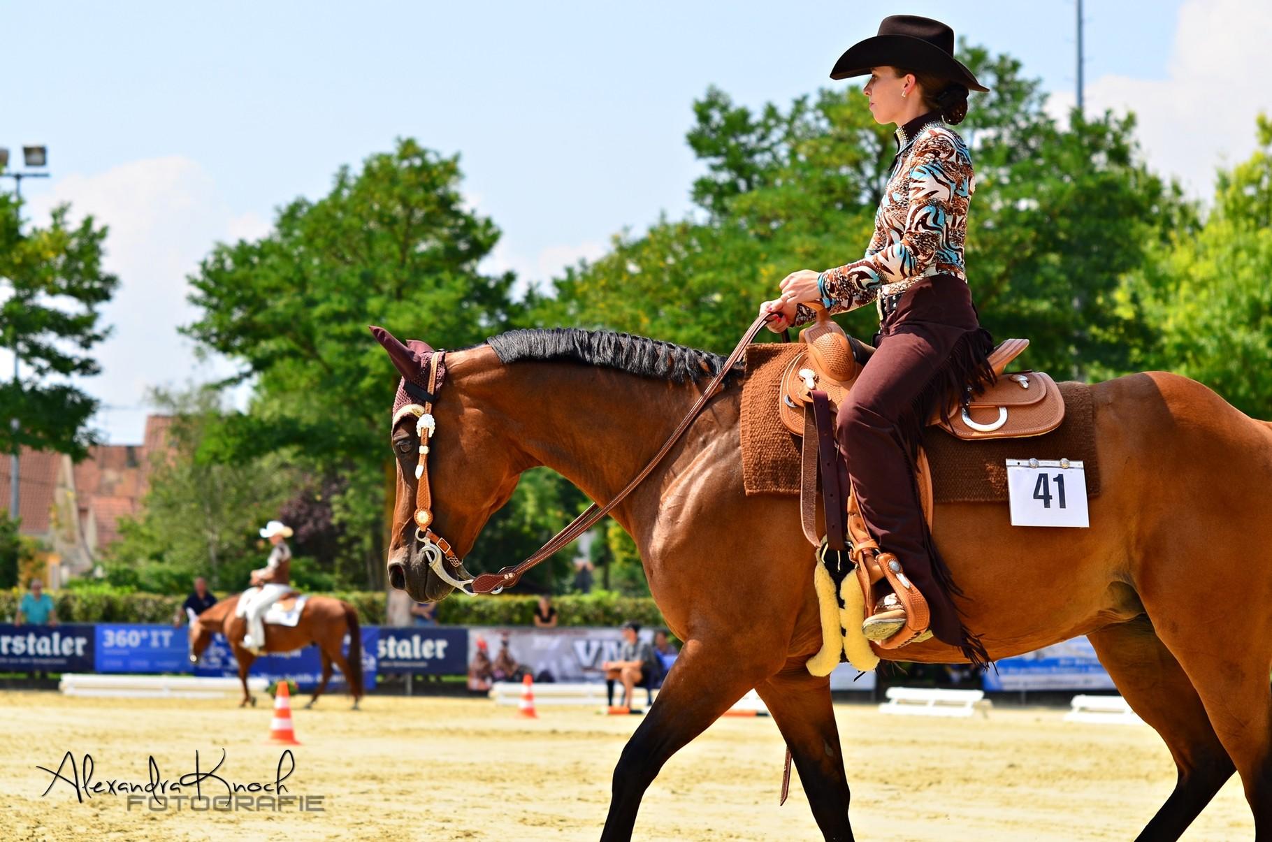EWU Landesmeisterschaft 2015 - Horsemanship