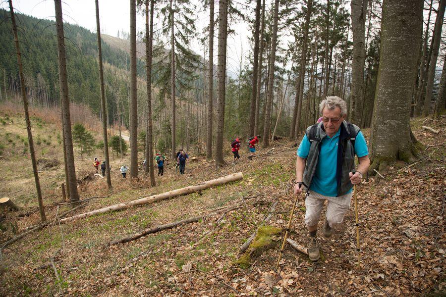 Weiter , kurzer Aufstieg Richtung Ochsenkogel