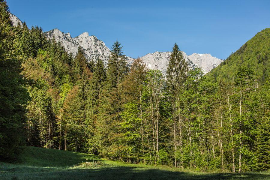 Erste schöner Blick auf die Sengsengebirge