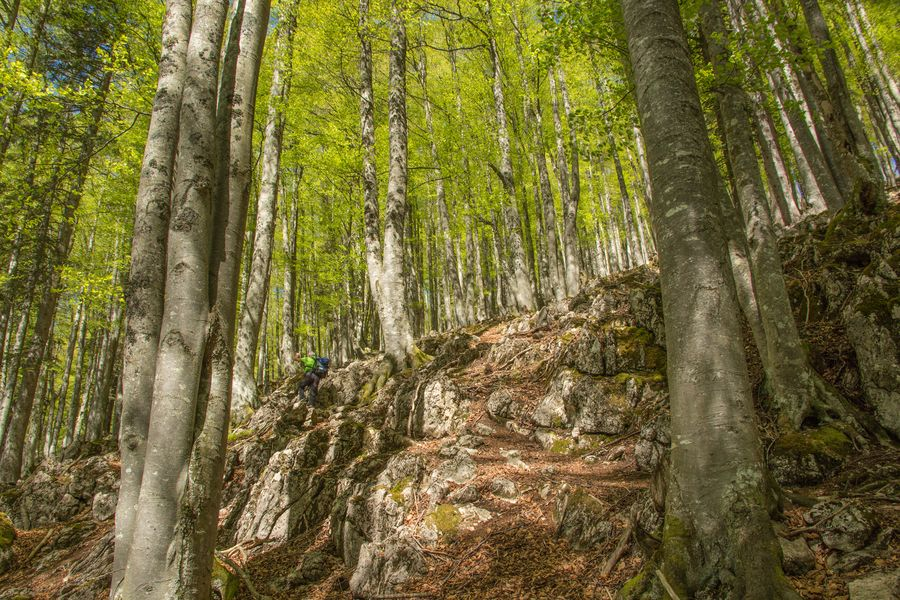 Schöner Wegverlauf, immer auf die Steinmänner achten...