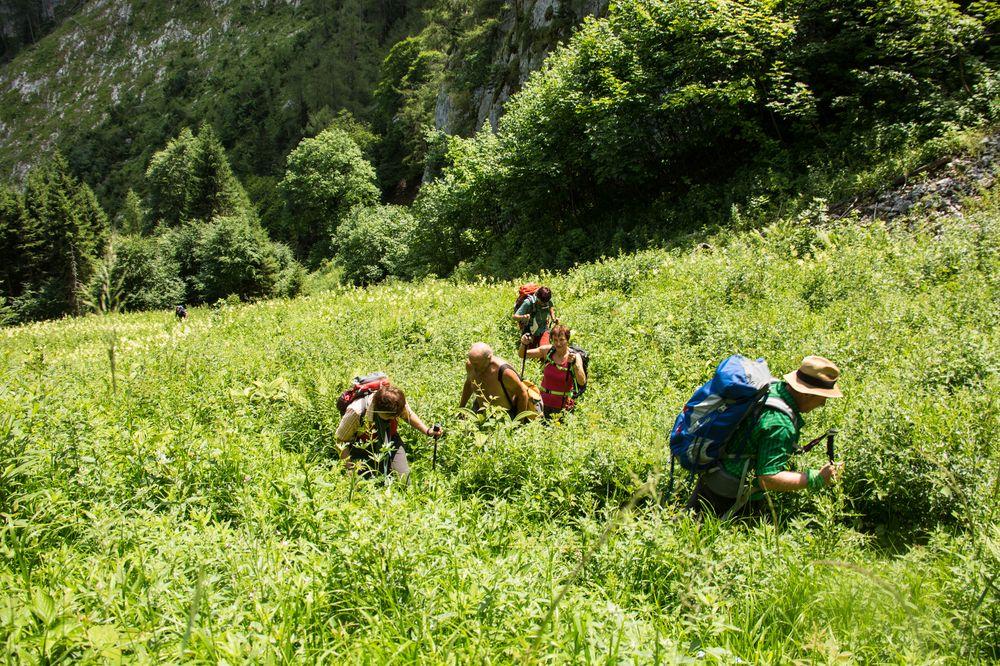 Kurzer steiler Aufstieg dur das hohe Gras und Brenesseln :-)