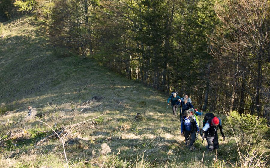 1. Aufstieg zum Kienberg