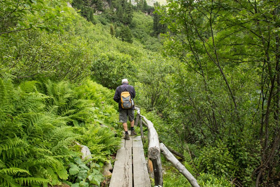 Zum Teil schön angelegte Holzwege