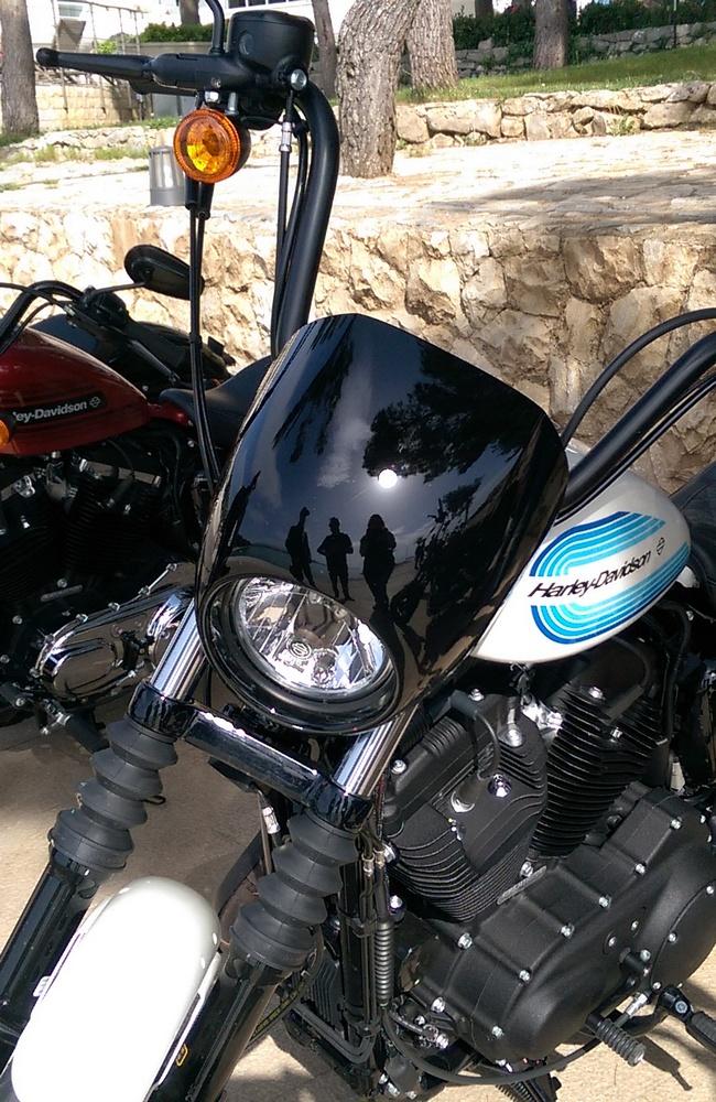 H-D Sportster 1200 Iron