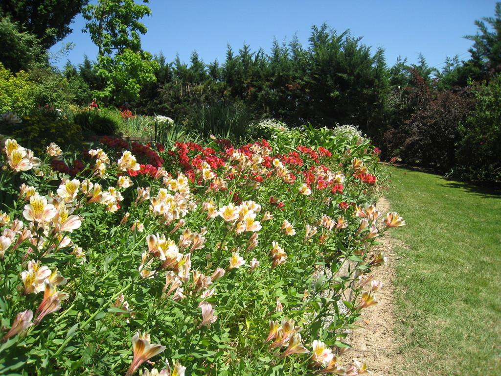 Jardin des Martels parterre fleuri