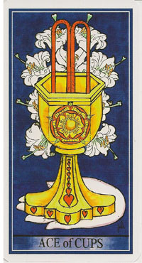 As de Coupes - Le tarot de la Roue de Dame Fortune