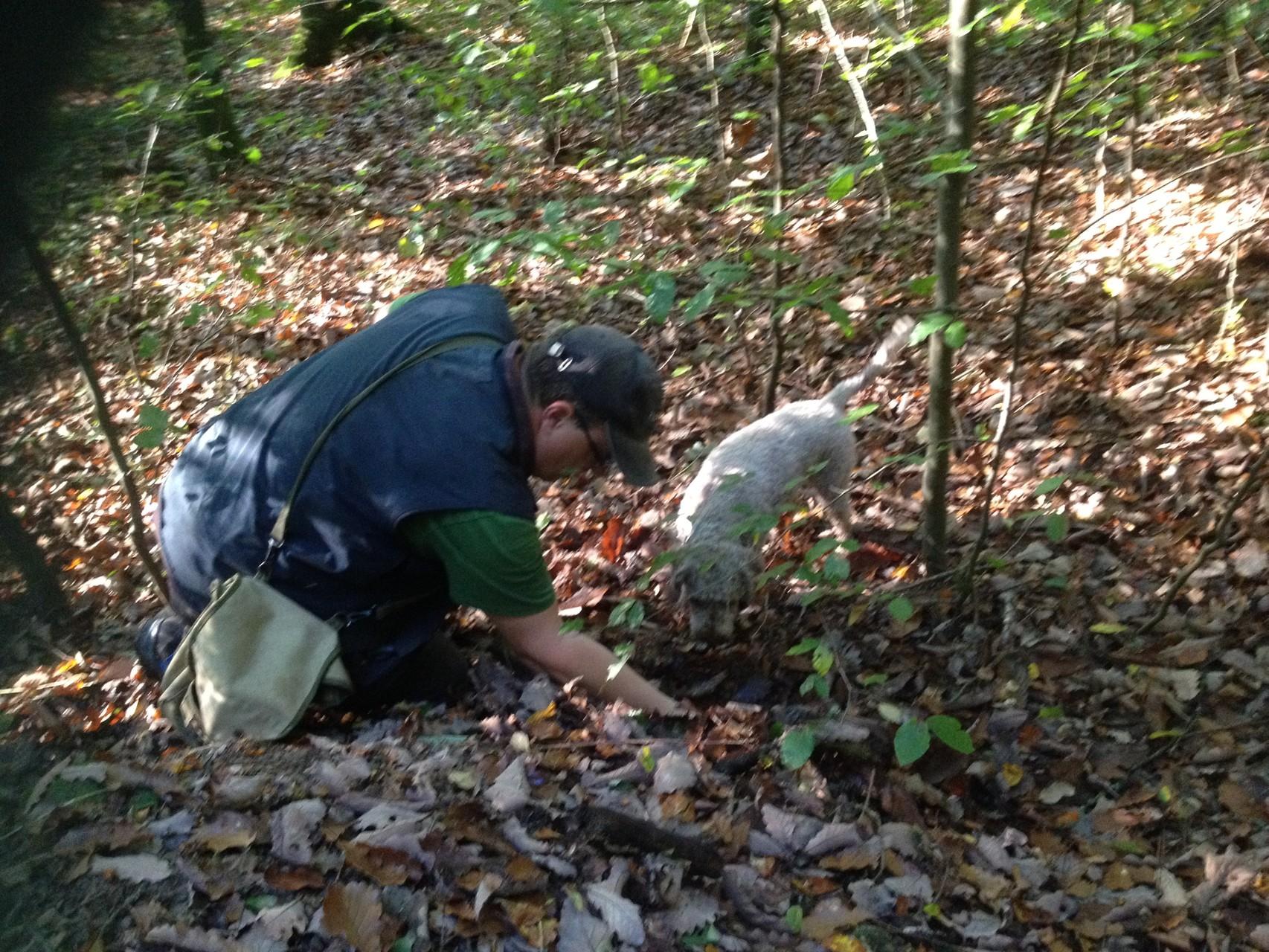 Baila und Beat bei der Arbeit im Wald