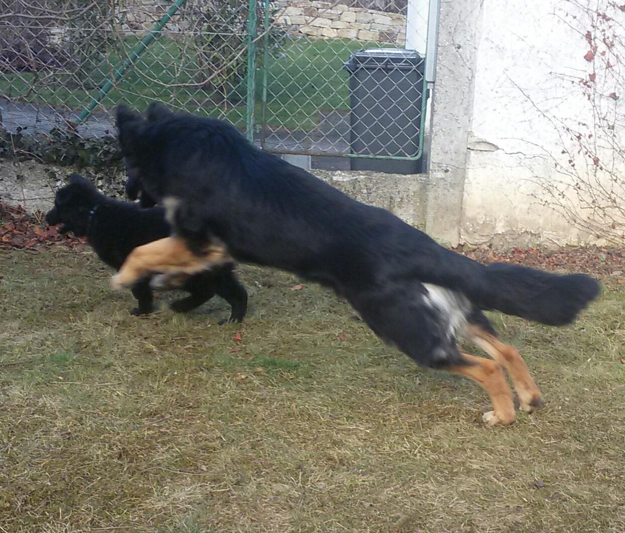 Spielen mit kleinem Schwesterchen