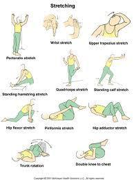 Rek En Strekoefeningen.Blog Sportmassage En Fysiotherapie In De Vruchtenbuurt