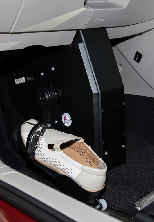Golf Sportsvan System Franz Fußlenkung.