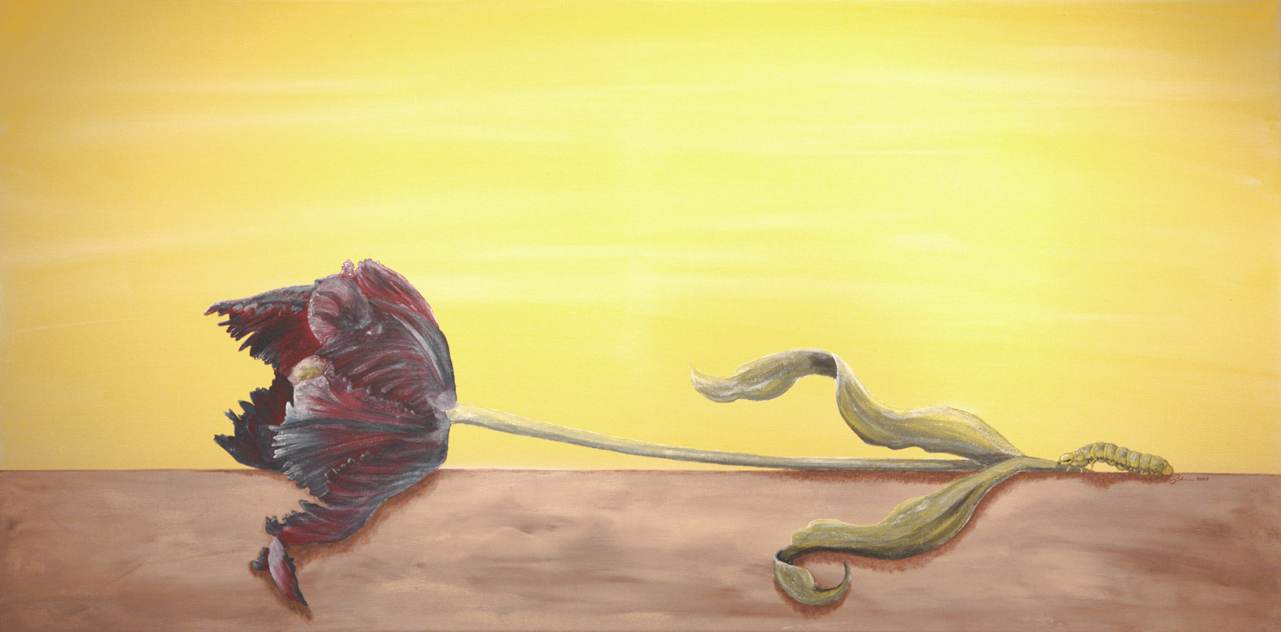 """Tulpe mit Raupe"" Leinwand  100 x 50 cm"