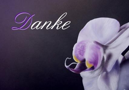 1 Orchidee