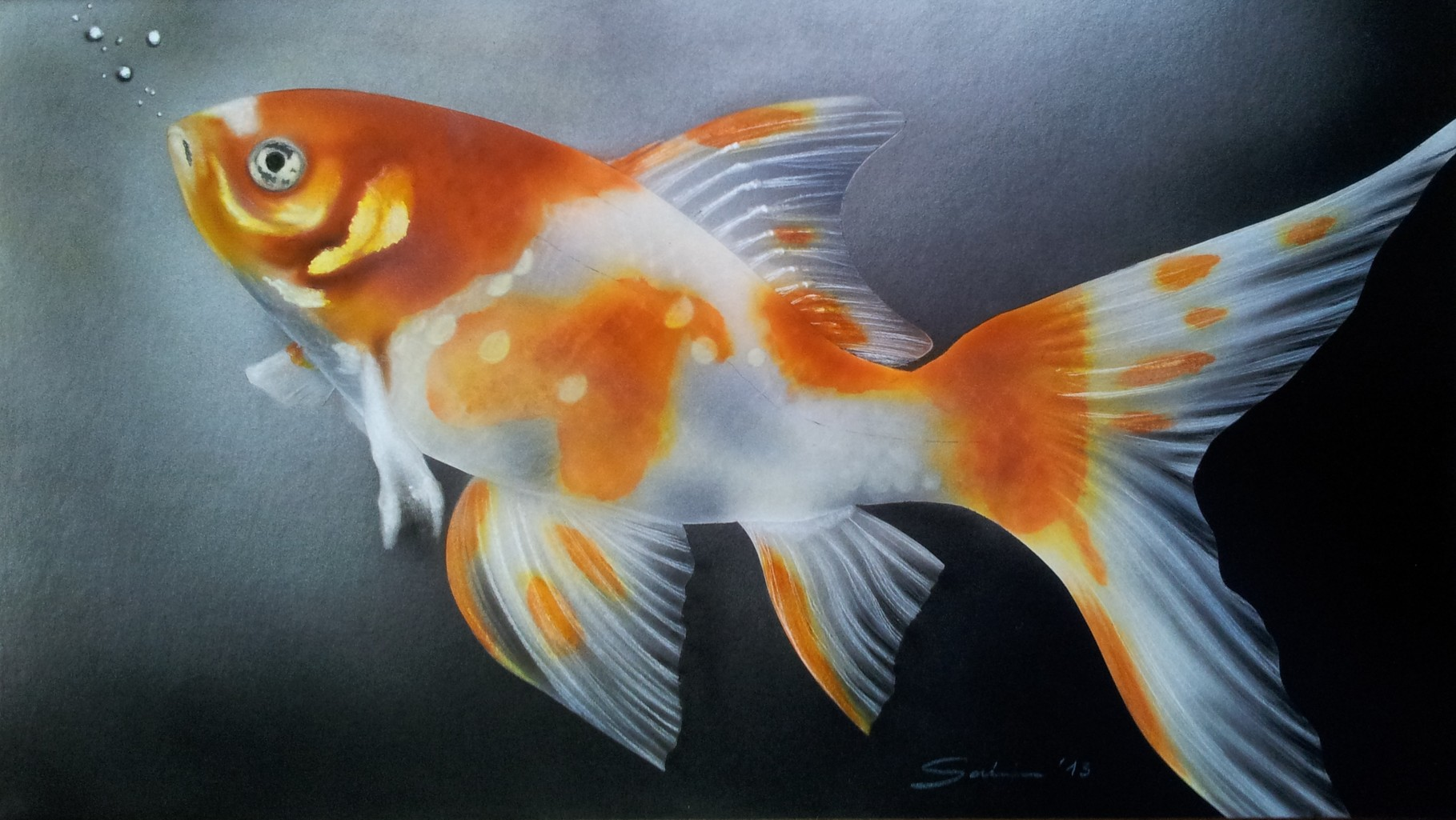 """Goldfisch"" Airbrushkarton ca. 37 x 20 cm Fotovorlage: Klaus Eppele"