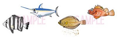 魚イラスト
