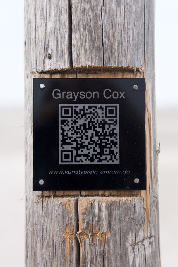 GRAYSON COX, 2015       Foto: S. Hermannsen