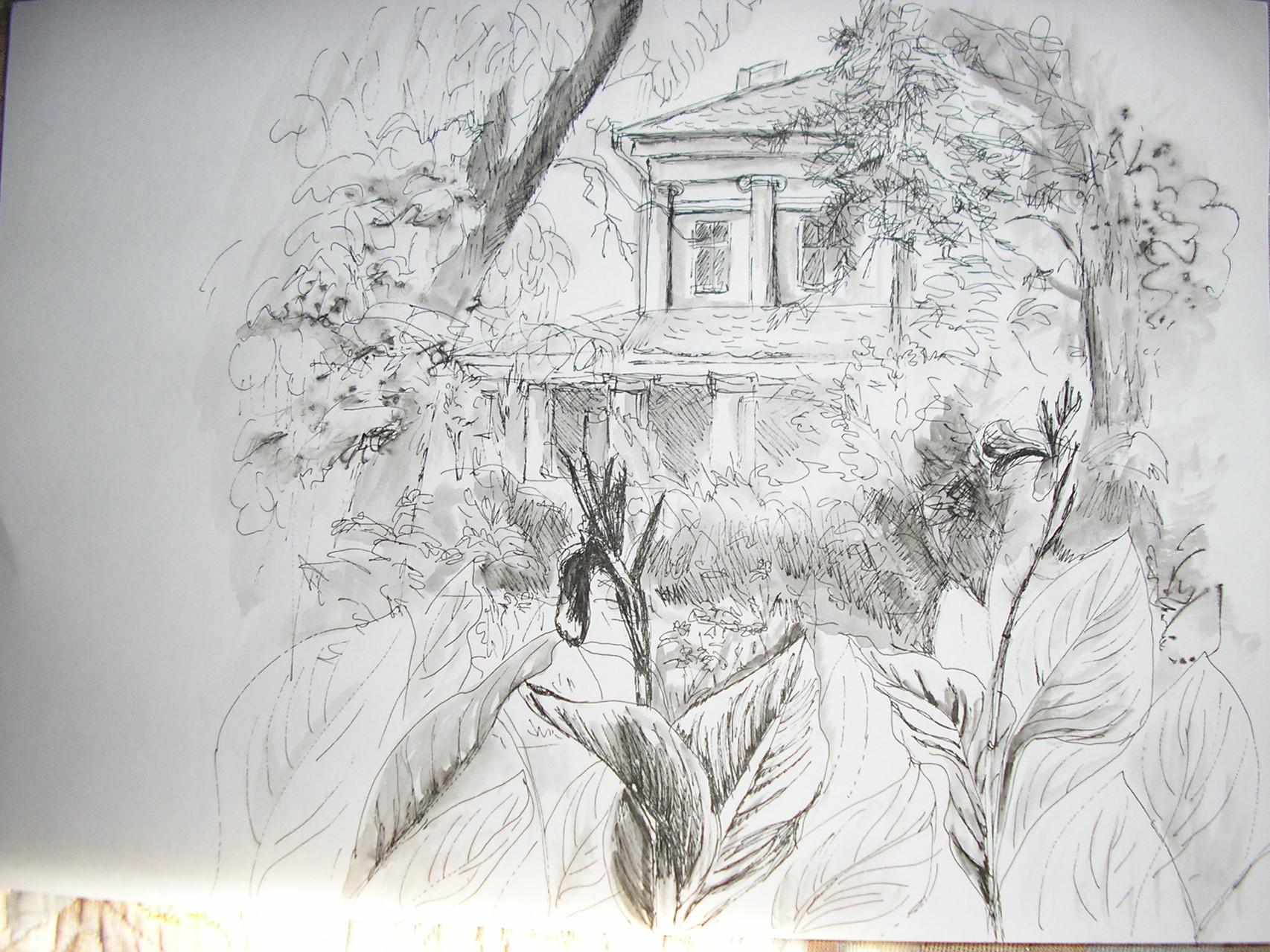В Ботаническом саду. Бумага, изограф