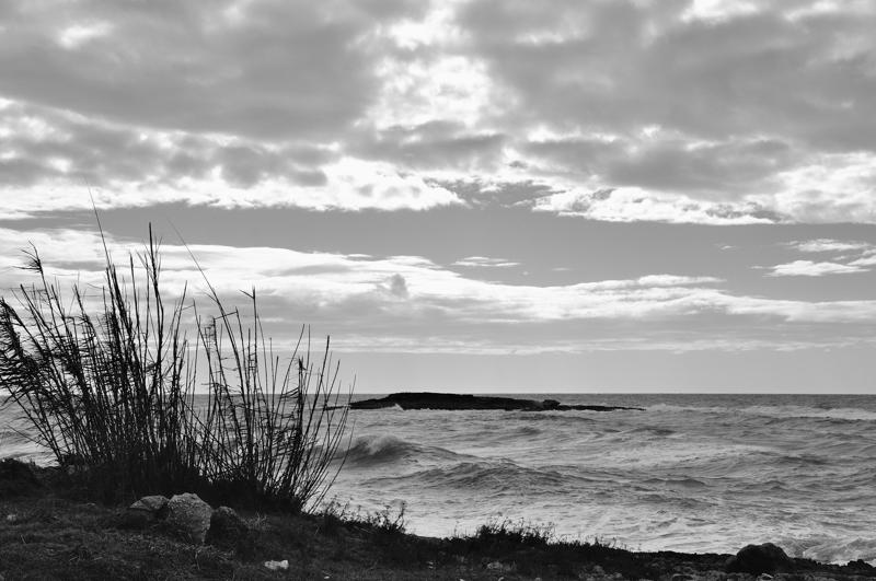 Strandgeflüster
