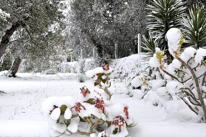 Winter im Salento