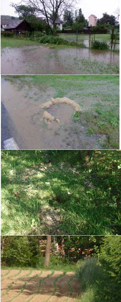 Wenn es stark regnet (1 v.o.n.u.) - Geht der Kanal über (2) - Nach dem Regen vertrocknen die Fäkalien auf der Wiese (3) - Heute liegt der Kanaldeckel unter dem Acker (4)