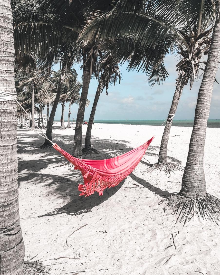 Hängemaate am Strand von Key Biscayne
