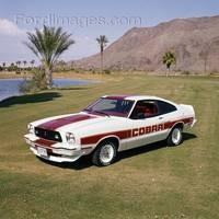Mustang Cobra 78