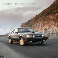 Mustang SVO 84