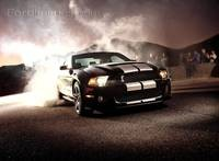 Shelby GT500 2012